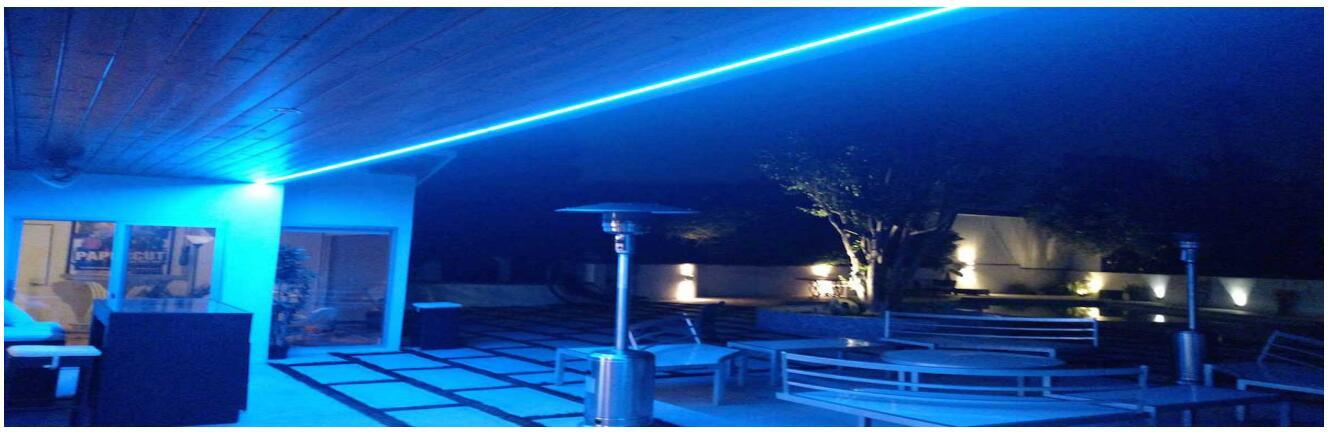 custom neon strip light flexible certifications for event