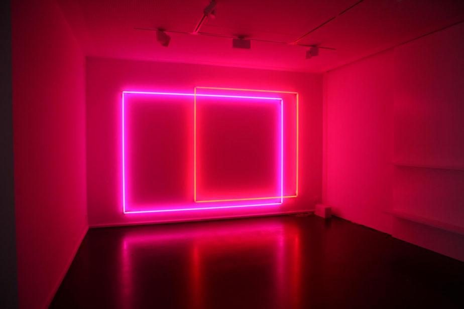 DeRun first-rate neon strip light supply for restaurant-9
